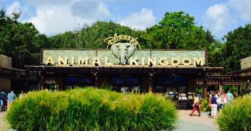 Wild Africa Trek: Disney's Animal Kingdom Behind the Scenes