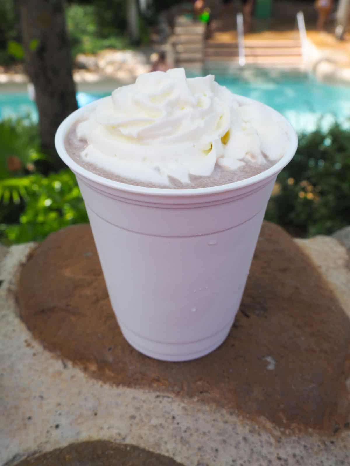 Kid-Friendly Drinks at Walt Disney World to help you Beat the Heat