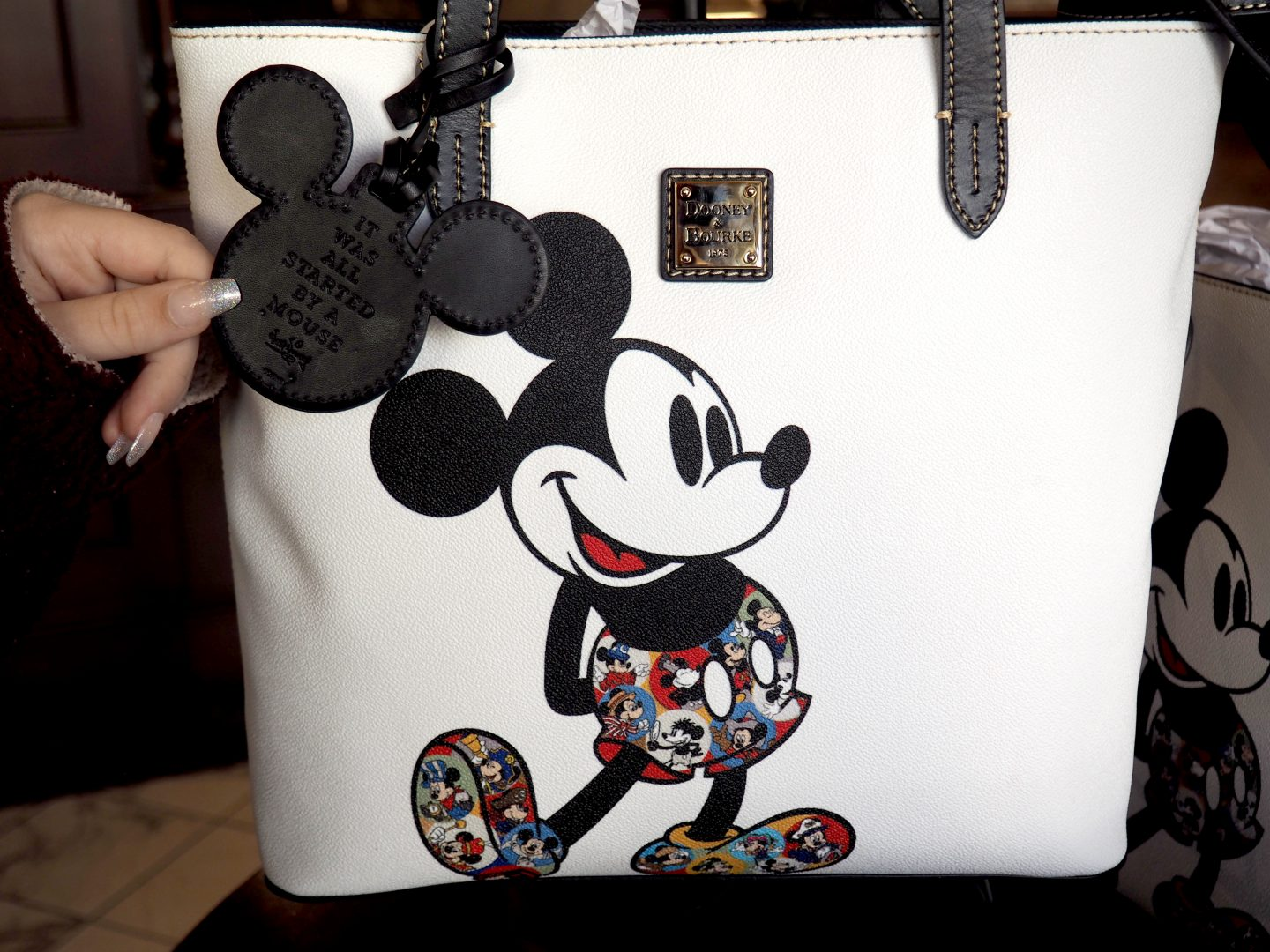 dISNEY DOONEY AND bOURKE 2019 mickey bag