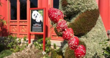 Epcot Flower and Garden Festival Menus