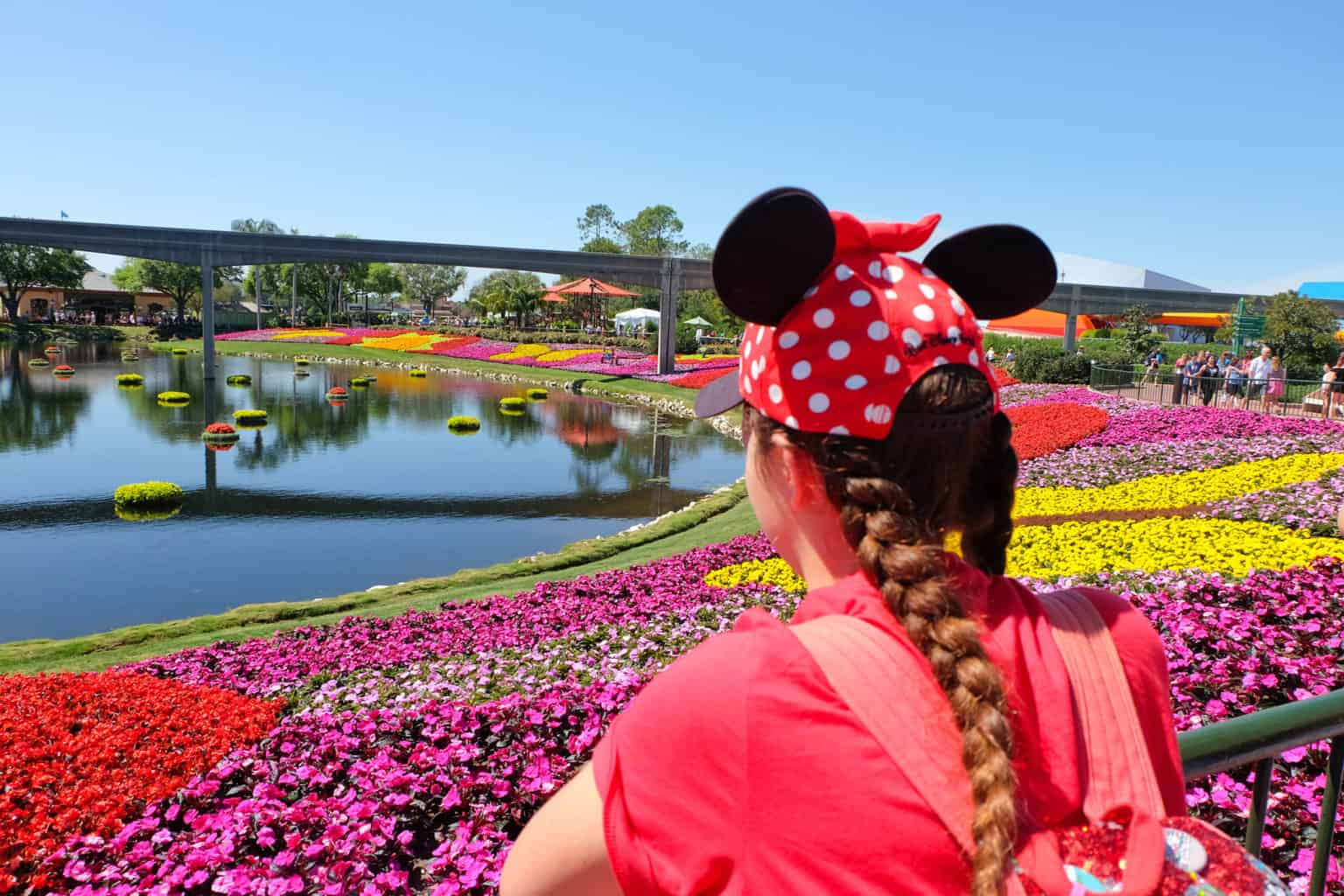 Planning a Trip to Walt Disney World