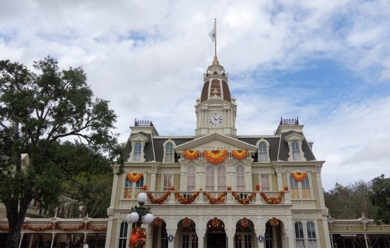 Walt Disney World Bucket Lists of Each Disney Park & Free E-Book