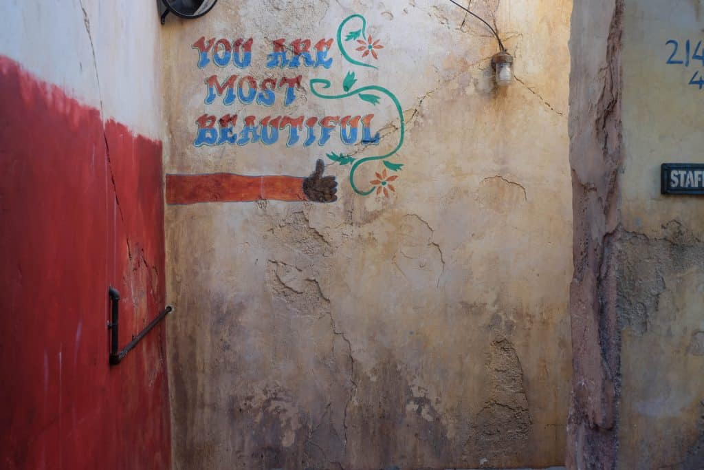 You are Most Beautiful Wall Harmabe Animal Kingdom