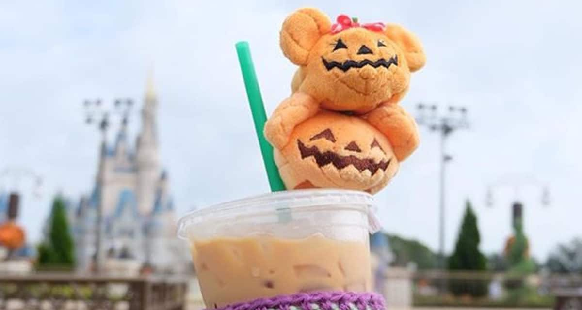 fall at walt disney world, disney fall, disney halloween, mickeys not so scary