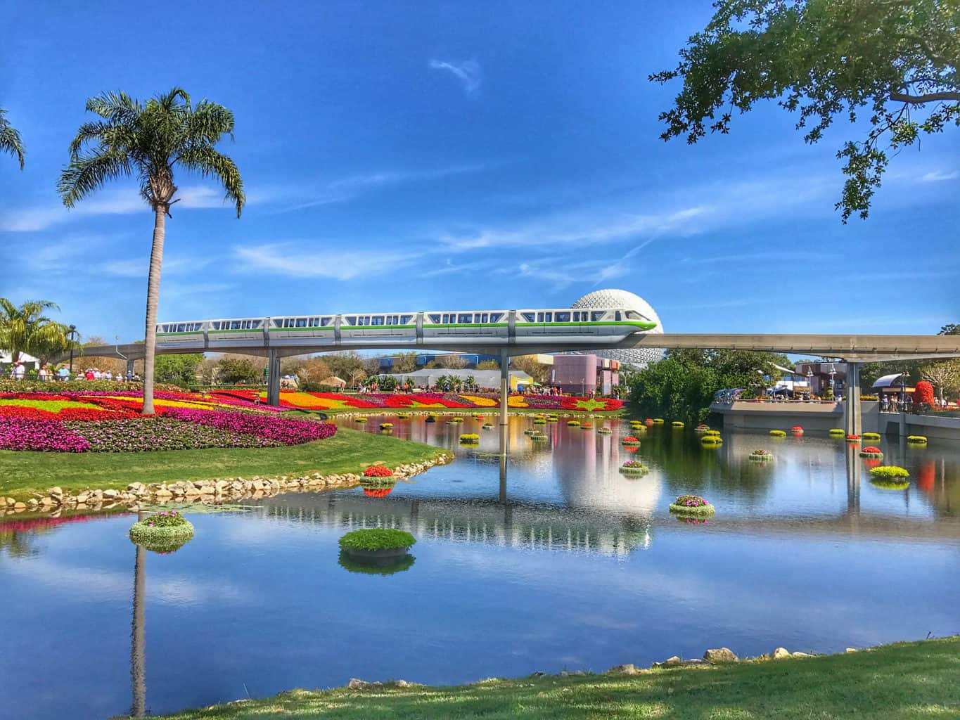 The Best Photography Spots in Walt Disney World