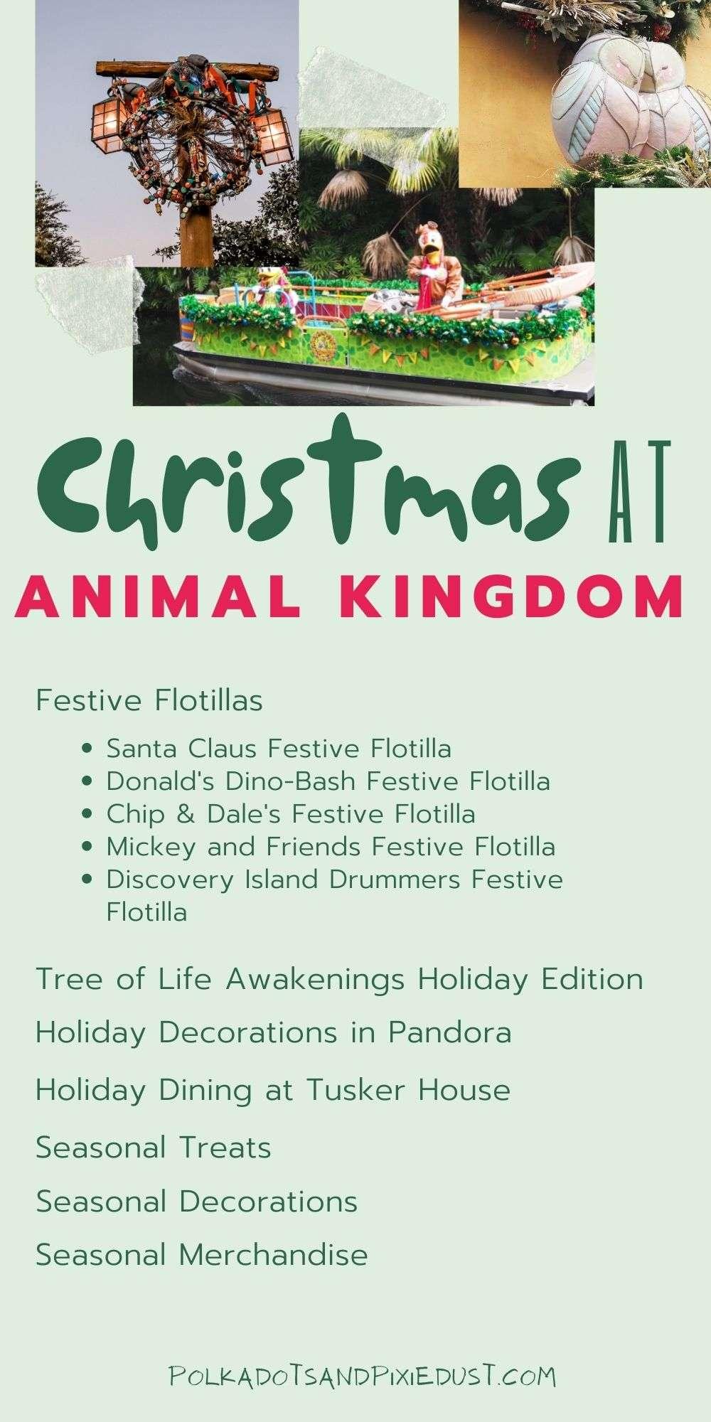 Christmas at Animal Kingdom Walt Disney World