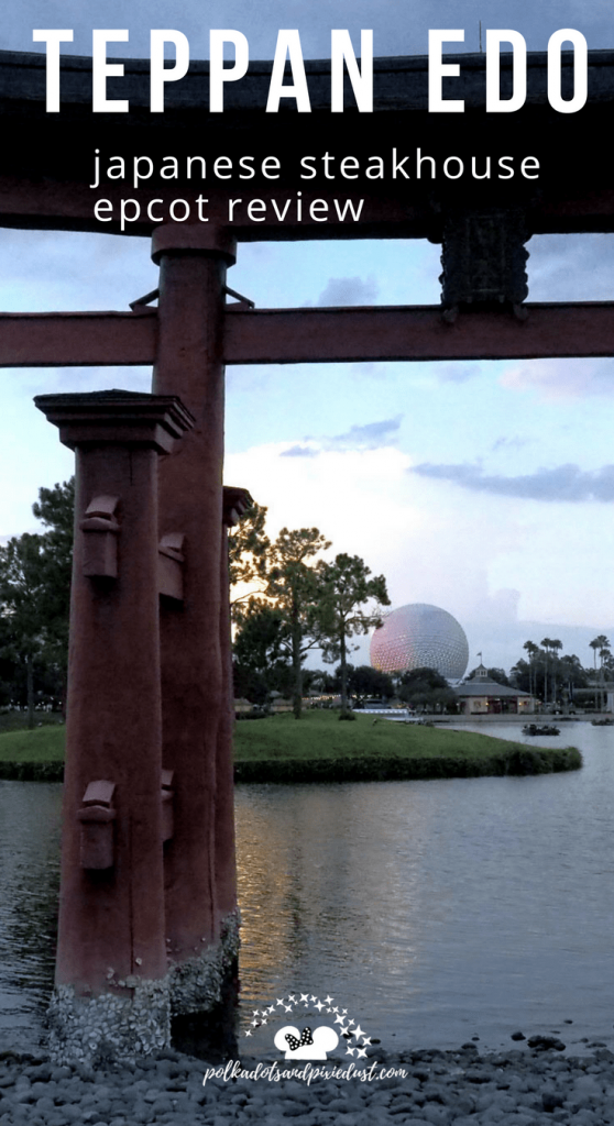 epcot restaurant teppan edo Japanese restaurant review
