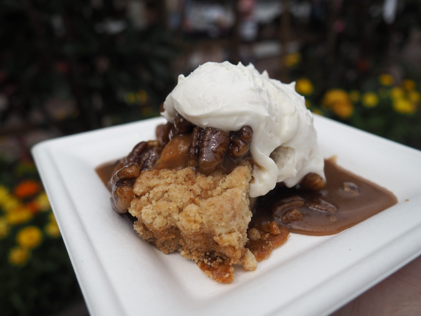 magnolia terrace pecan cake flower and garden festival 2020