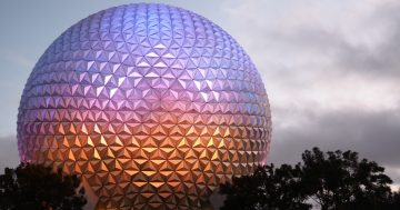 Walt Disney World Changes for the 50th Anniversary