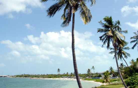 Florida Destinations For Your Next Family Vacation
