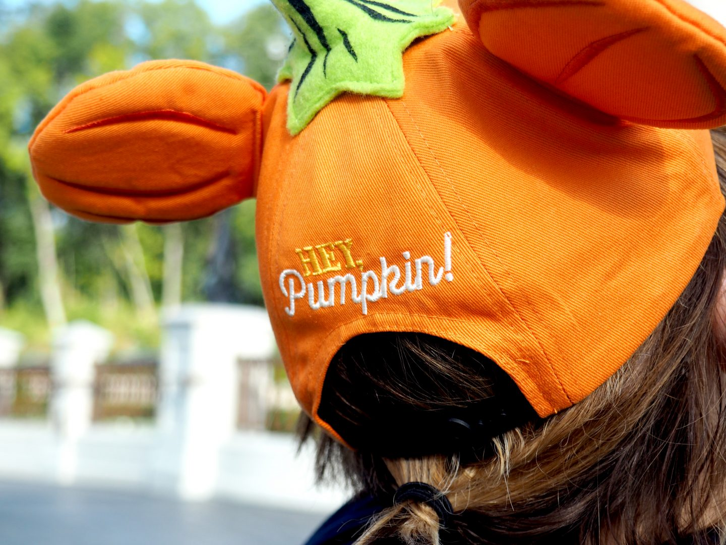 disney in the fall merchandise 2020