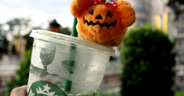 Halloween at Walt Disney World: A Beginners Guide
