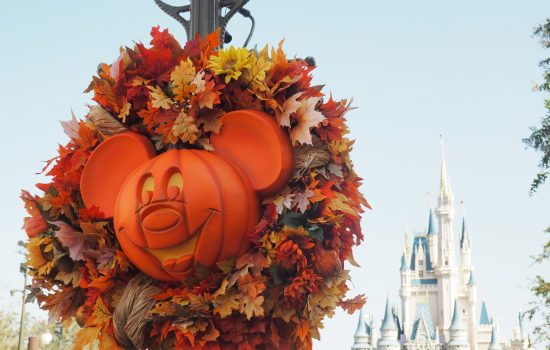 Disney Halloween Costumes: Flora, Fauna and Merryweather