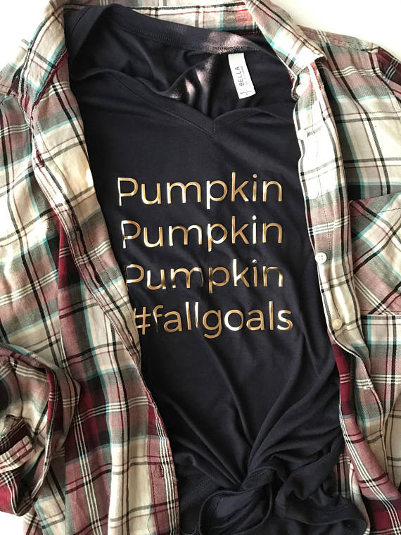 a new flannel shirt