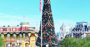A Disney Christmas Vacation 5 Must Do's!