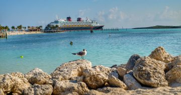 Disney Cruise Vacation Things to Buy BEFORE Your Cruise