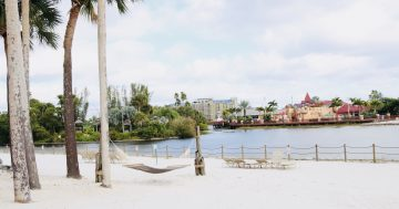 Caribbean Beach Resort at Walt Disney World: A Resort Review