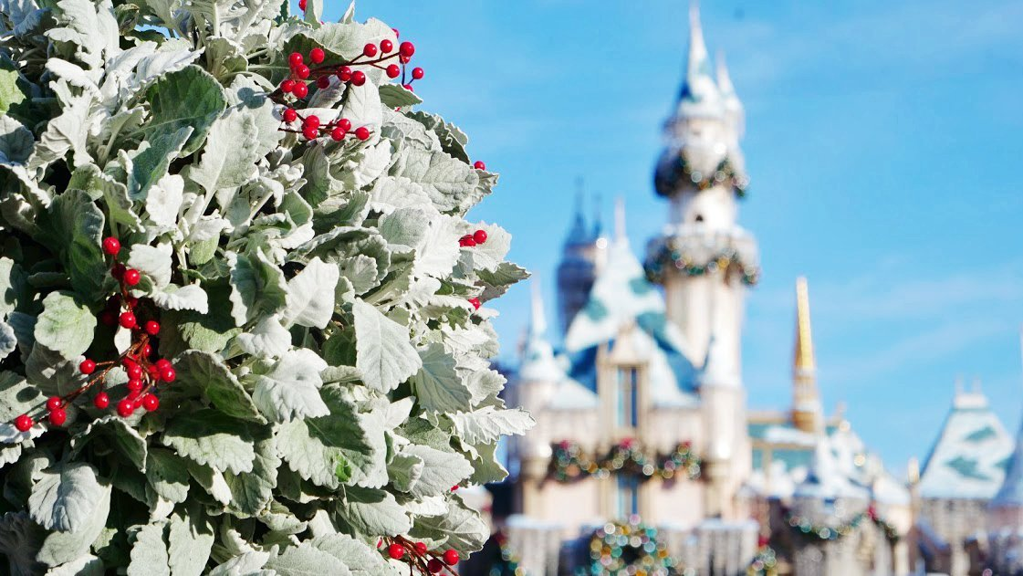 disneyland at Christmas