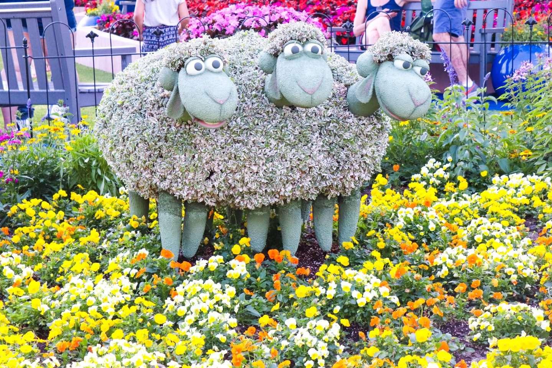 flower and garden 2020, epcot flower and garden festival, disney flower and garden, international flower and garden festival, spring things disney world, epcot flower and garden festival