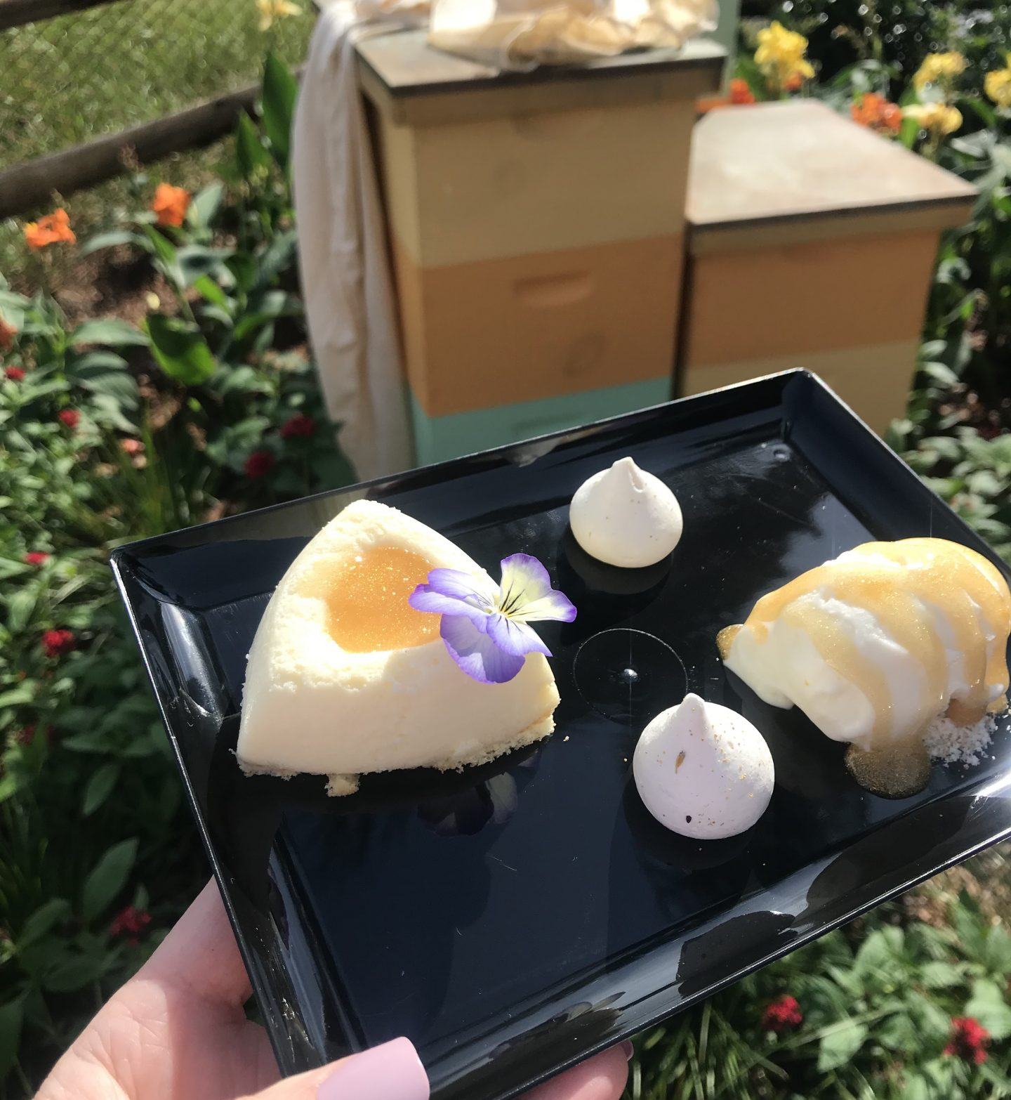 Epcot Flower and Garden festival, flower and garden festival, international flower and garden festival, what to eat at disney, disney foods, disney festival foods
