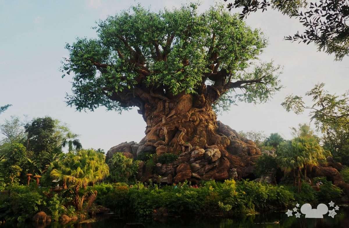 Celebration of the Lion King at Walt Disney World