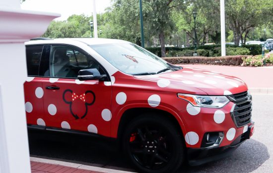 Minnie Vans at Disney: What You Need to Know