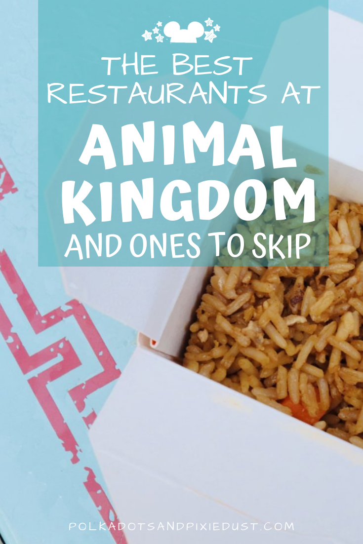 The best restaurants in Animal Kingdom offer the best flavors, most authentic cuisine and lots of atmosphere! See our favorite Animal Kingdom Restaurants and a few worth missing. #polkadotpixies #animalkingdomrestaurants #disneytips #waltdisneyworld #polkadotpixies