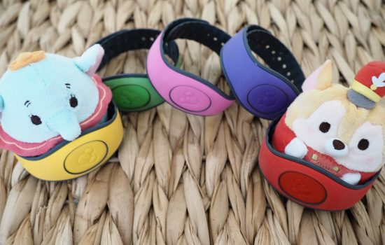 Disney MagicBands: A Quick Guide