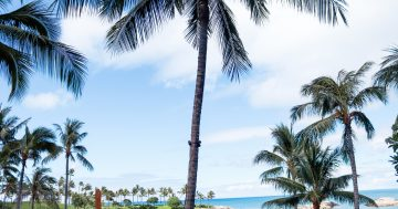 What To Pack For A Disney Aulani Resort Vacation