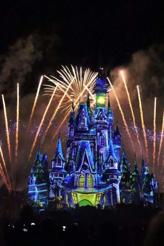 Phone Photos Walt Disney World