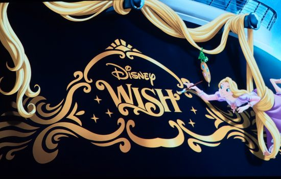 Disney Wish Cruise Ship Guide