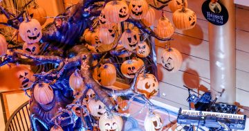 Halloween on the High Seas 5 Must Dos on a Disney Cruise