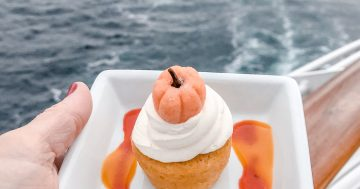 Halloween on the High Seas: What to pack for your Disney Cruise