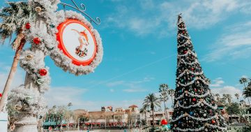 Disney Crowd Tips for the Holidays