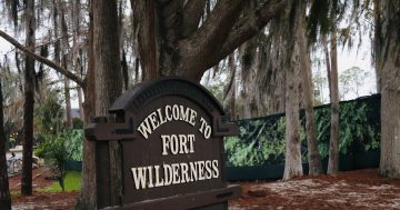 Why Disney Fort Wilderness Resort is Perfect For A Staycation