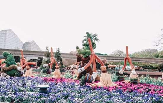Flower and Garden Festival Photo Tour