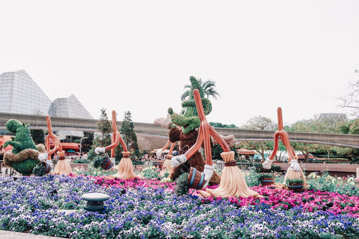 Flower and Garden Festival Photo Tour