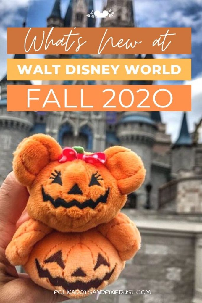 Fall at Walt Disney World 2020 means no shows, events, no fastpasses and more. But what CAN you do at disney this Fall? Here's everything happening! #disney2020 #disneyinthefall