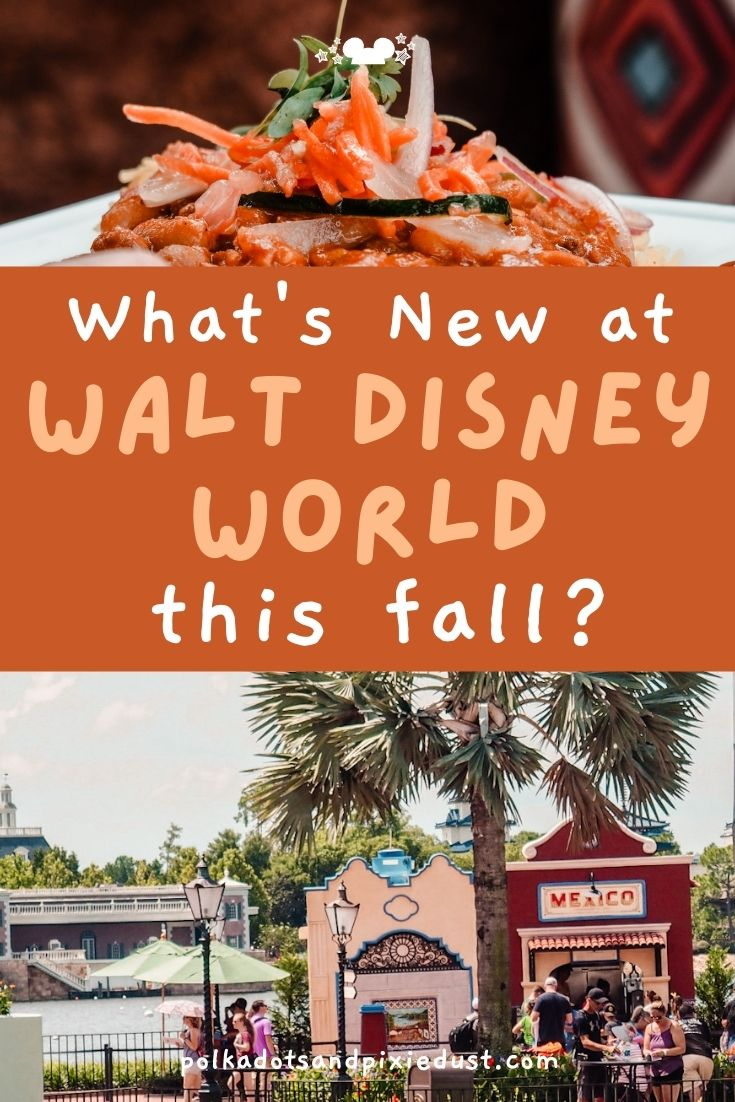 What's Happening at Walt Disney World this fall? Here is everything to know before you go!