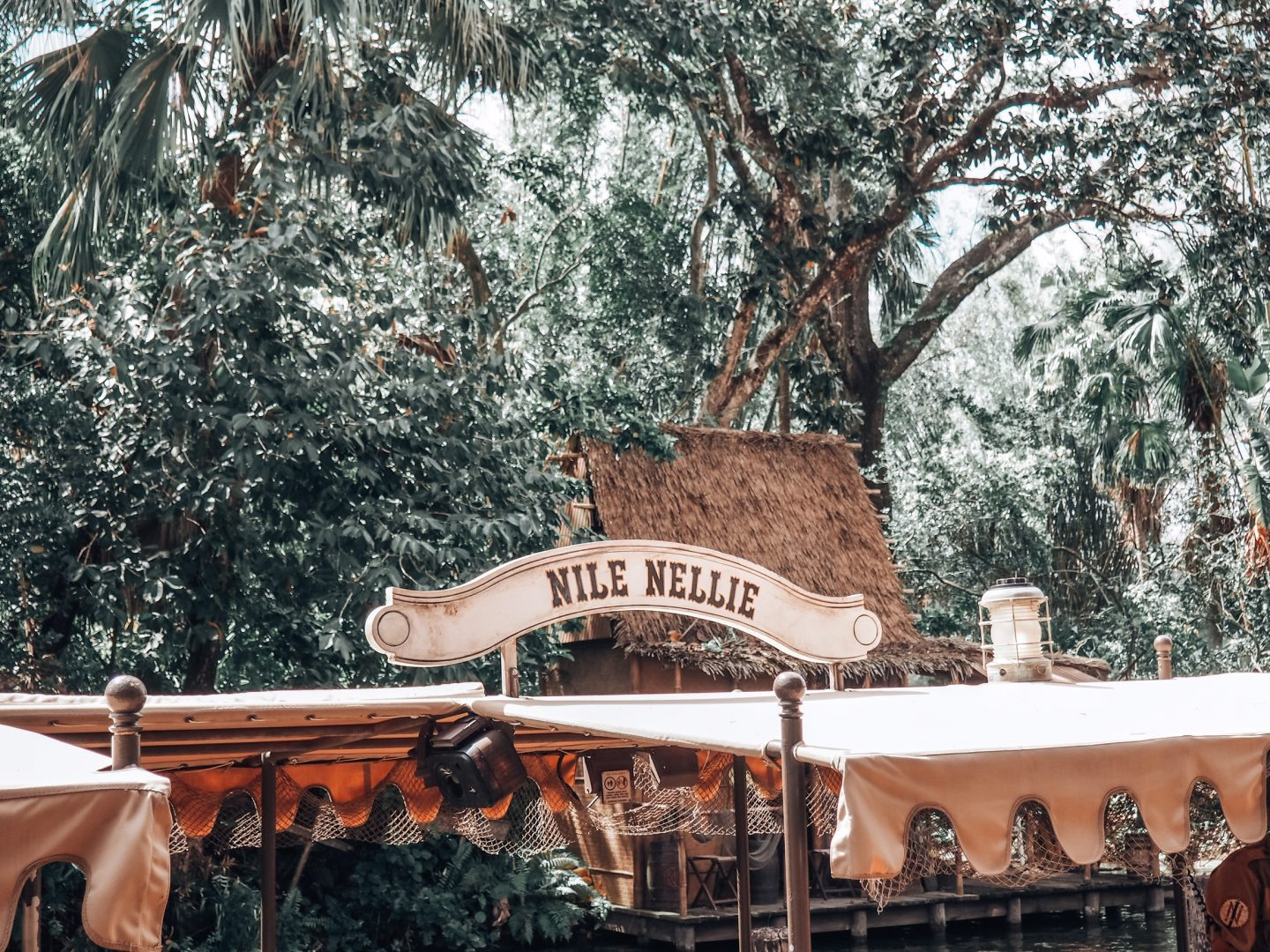 disney jungle cruise boat