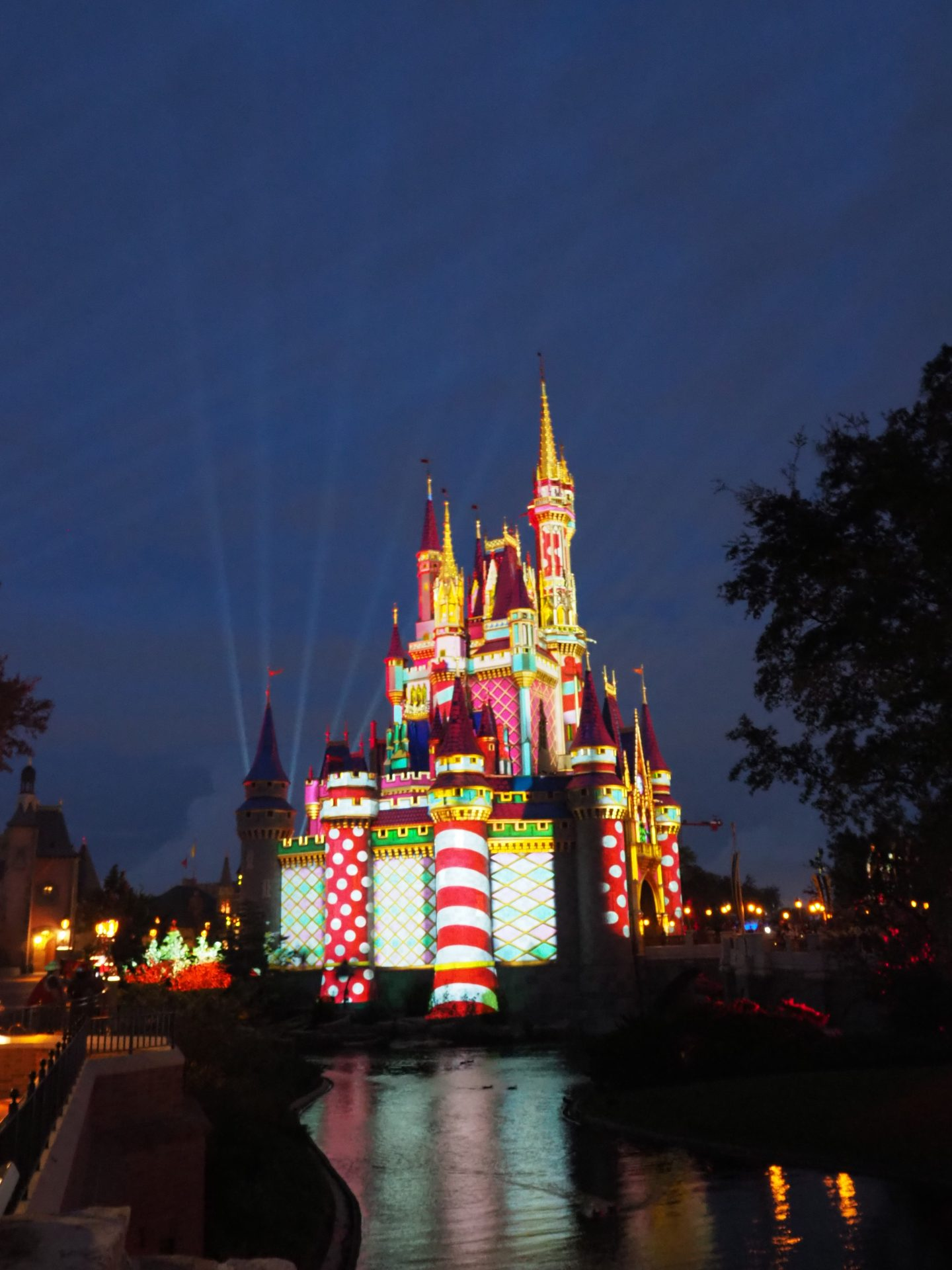 disney castle projection show