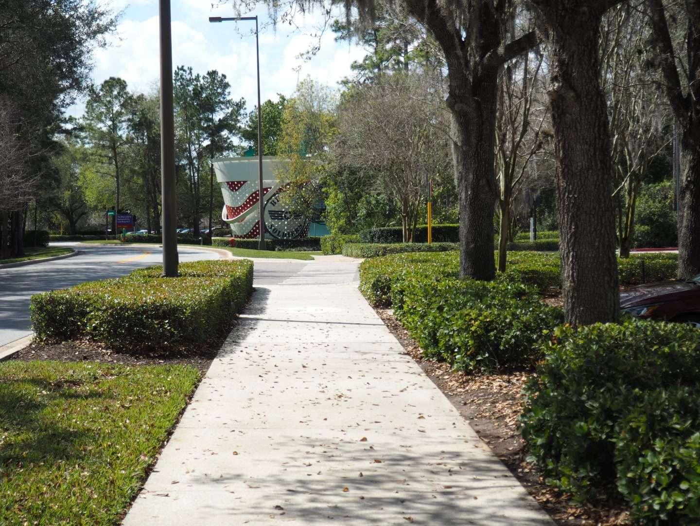 Walking paths at disney world