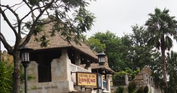 10 Free Things You Can Do At Walt Disney World