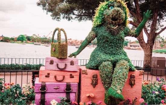 Flower and Garden Festival Tips and Tricks