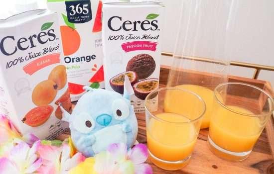 Disney's POG Juice Copycat Recipe