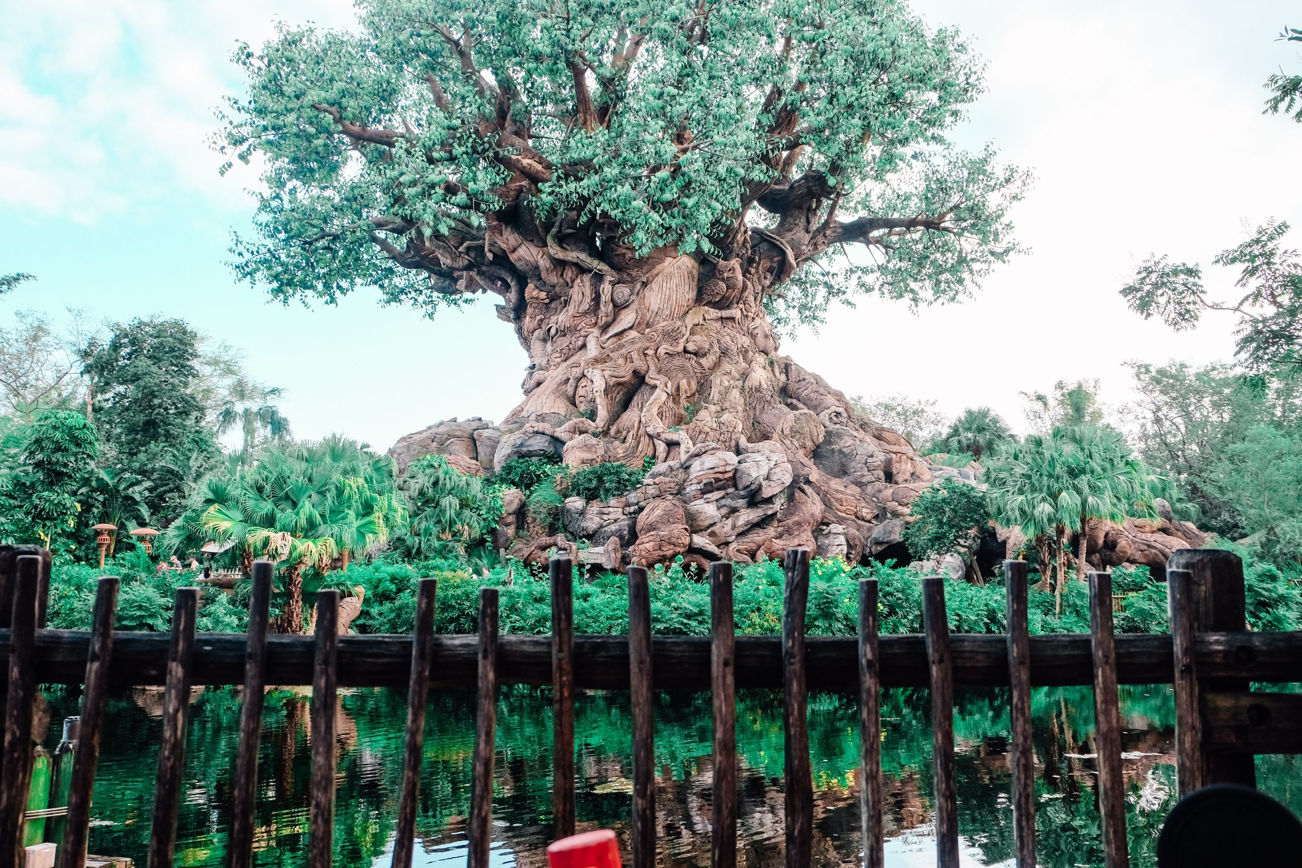 How to Travel Eco-Friendly on a Disney Vacation