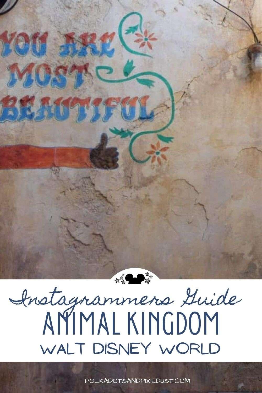 Disney Photography Spots in Animal Kingdom