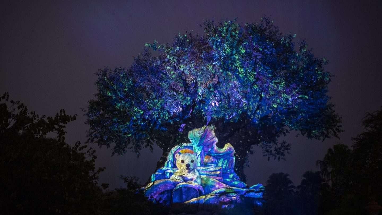 Animal Kingdom Tree of Life at Christmas