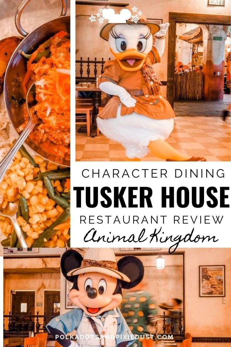 Tusker House at Walt Disney World's Animal Kingdom Menu, Characters and Review. #polkadotpixies