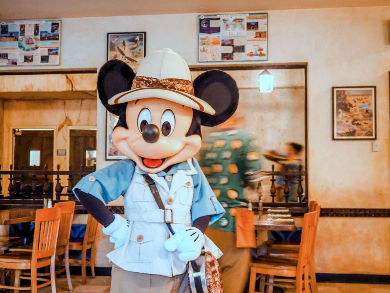 Mickey at Tusker House